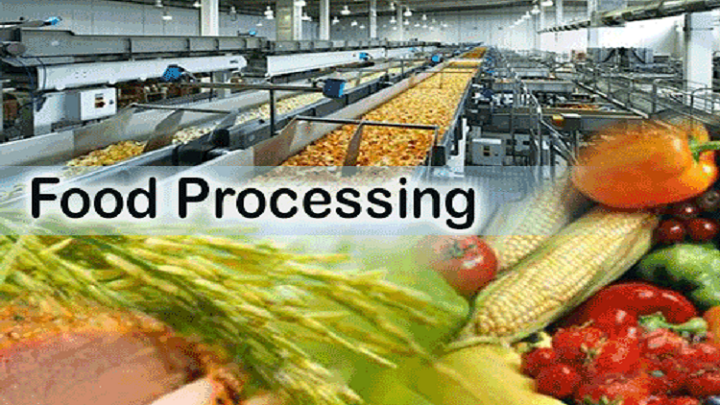 Growth in Consumer Preference towards Branded Food Products Anticipated to Drive Food Processing Industry: Ken Research