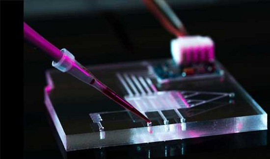 Increment In The Landscape Of The Microfluidics Market Outlook: Ken Research