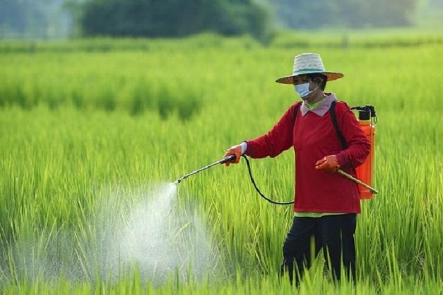 Growing Landscape of Worldwide Agricultural Sprayers Market Outlook: Ken Research