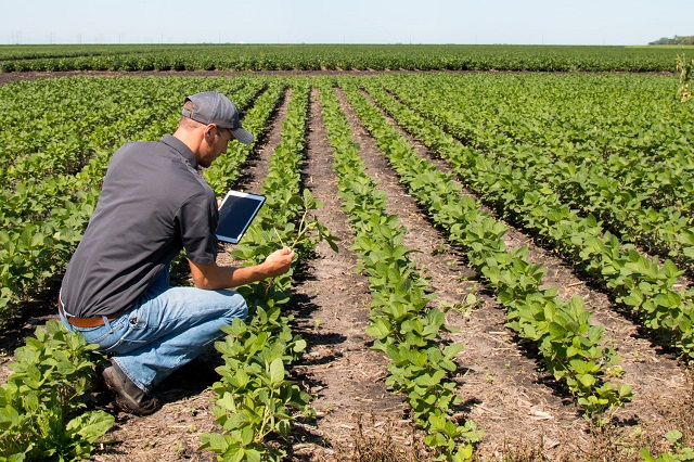 Advancement in Technologies Offers Lucrative Growth Prospects for Worldwide Agricultural Testing Market Outlook: Ken Research