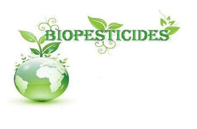 Growing Landscape of Worldwide Biopesticides Market Outlook: Ken Research
