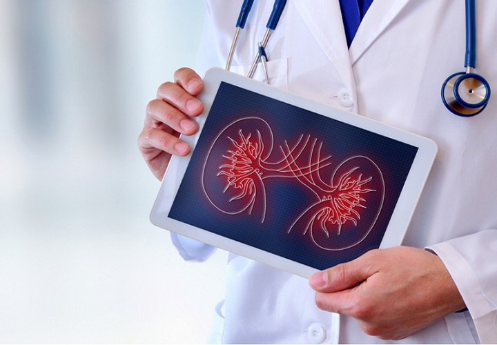 Increase in Prevalence of Chronic Kidney Diseases Expected to Drive Global Nephrology and Urology Devices Market: Ken Research