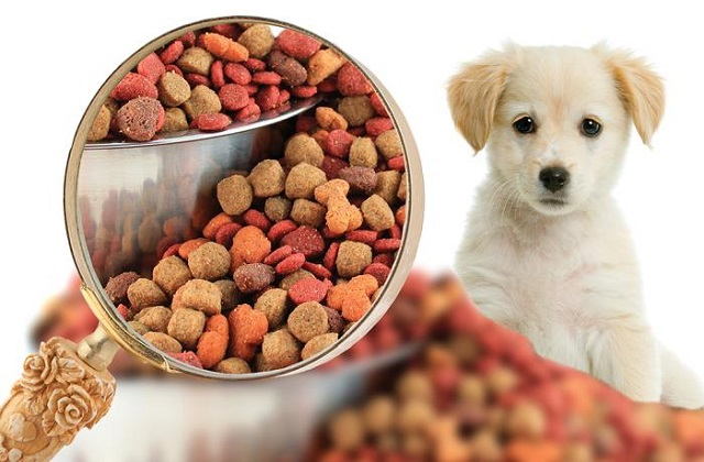 Innovative Pet Food Preparation Techniques to Drive the Pet Food Manufacturing Market: Ken Research