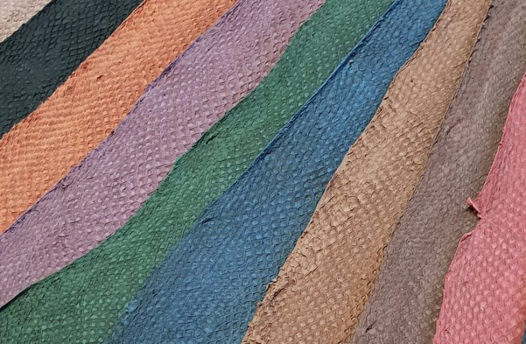 Future Growth of Global Fish leather Market: Ken Research