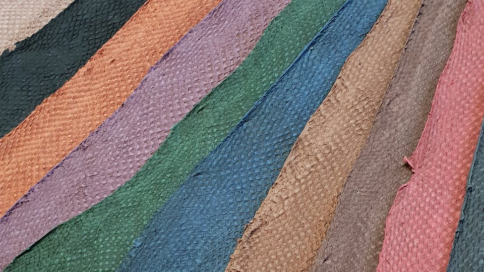 Global Fish Leather Market