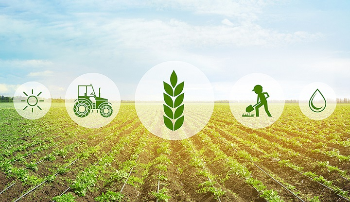 Dissimilar Development in Innovations across Libya Agriculture Market Outlook: Ken Research