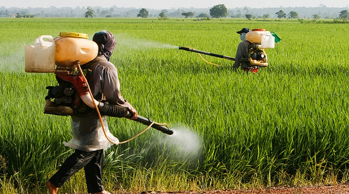 Global Crop Production Chemicals Market Outlook: Ken Research