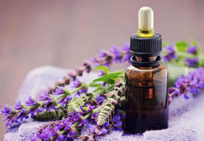 Global Clary Sage Essential Oil Market