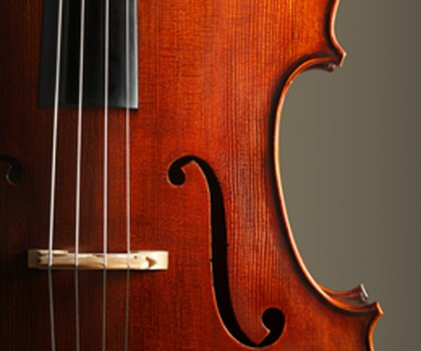 Rise in Awareness among the People about Music Education Expected to Drive Global Orchestral Strings Market: Ken Research