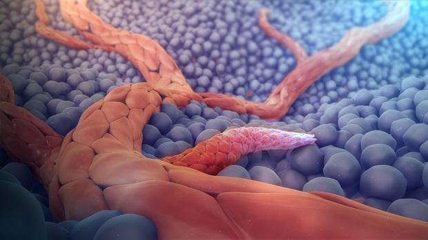 Global Angiogenesis Modulators Market Research Report: Ken Research